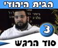 סוד הרגש , הבית היהודי-